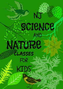 NJ Science And Nature Classes For Kids