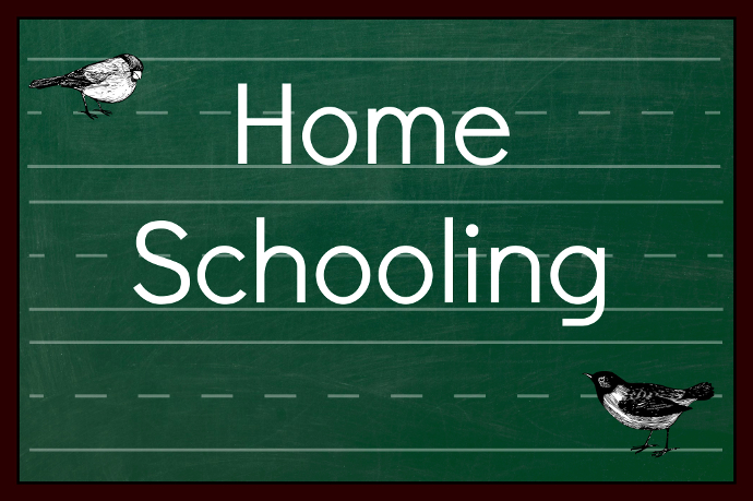 the disadvantages of homeschooling Why homeschool i realized early on that my daughter was a fidgeter, says one vermont mother whose child was diagnosed with attention deficit disorder ( add ), and who asked to remain anonymous.