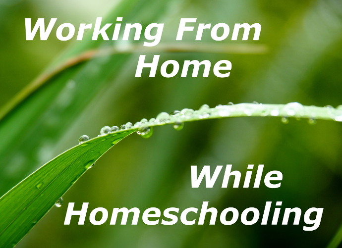 Working From Home As A Homeschool Parent